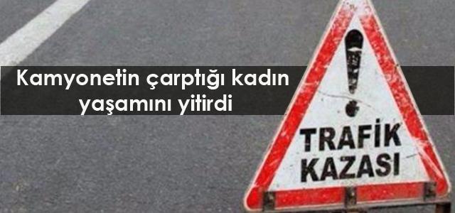 tt_pl