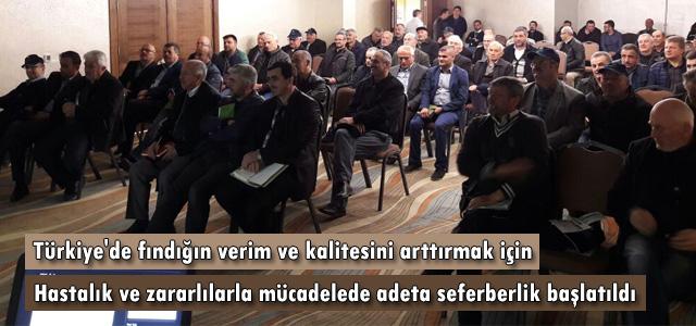Türkiye'de fındığın verim ve kalitesini arttırmak için hastalık ve zararlılarla mücadelede adeta seferberlik başlatıldı.